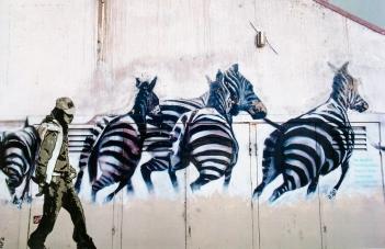 Street art 07 / 50*80 cm / (support aluminium) / 230€
