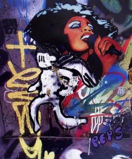 Street art 23 / 60*70 cm / (support aluminium) / 250€